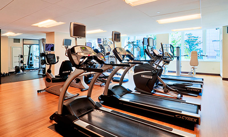 The-Veneto-Gym